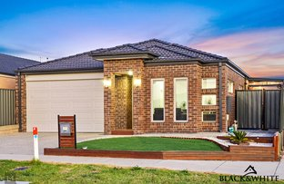 Picture of 94 Talliver Terrace, Truganina VIC 3029