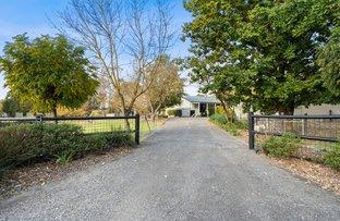 Picture of 3 Kinsman Drive, Murrumbateman NSW 2582