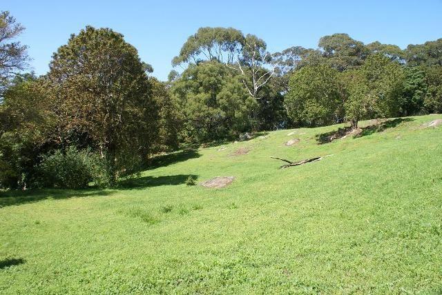 Coledale NSW 2515, Image 2