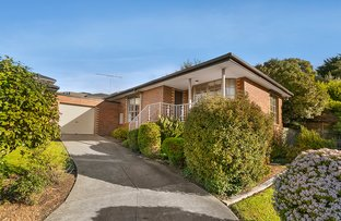 Picture of 3/165 Mascoma Street, Strathmore VIC 3041
