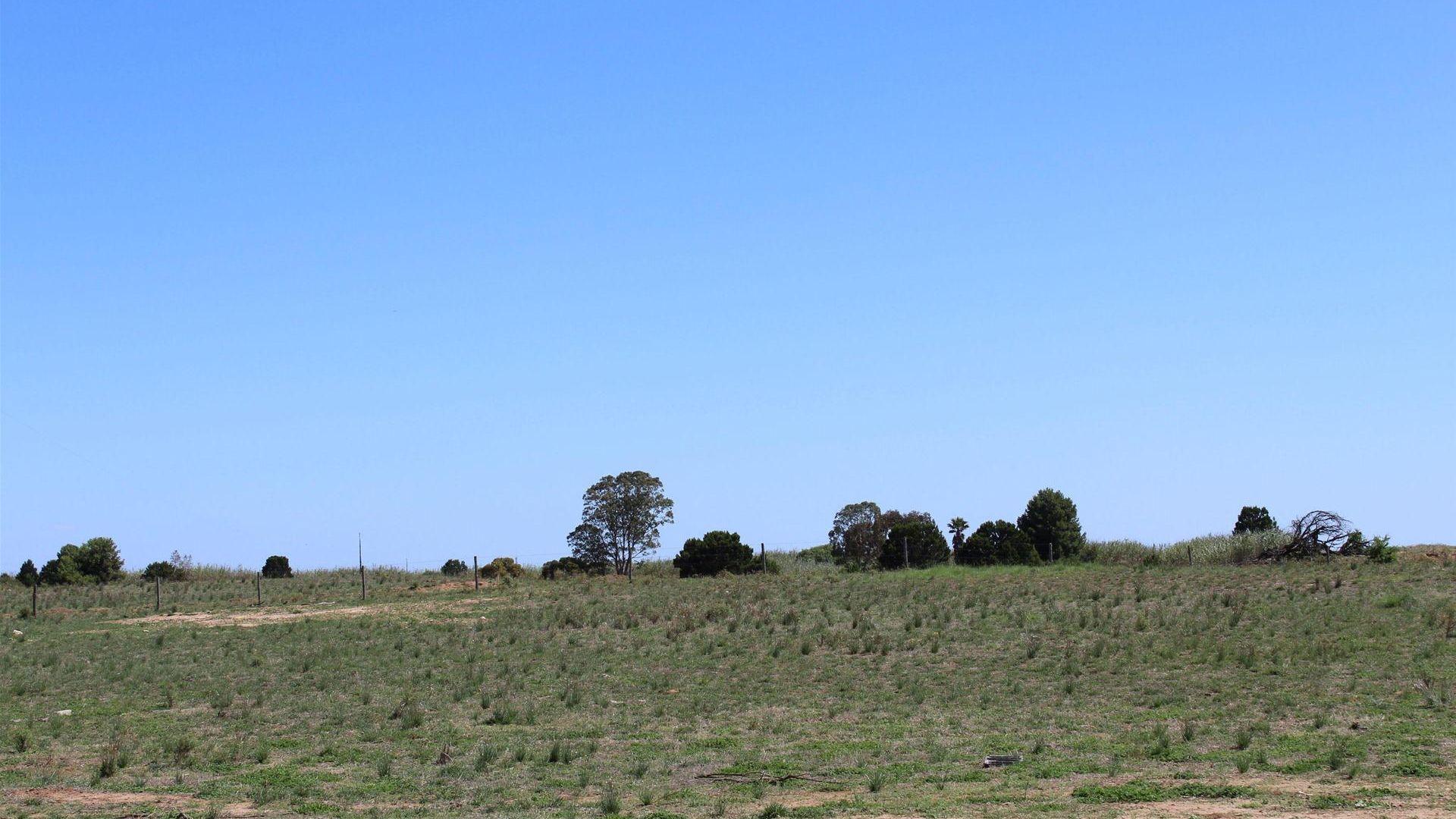 512 Blackett Road, Tailem Bend SA 5260, Image 2