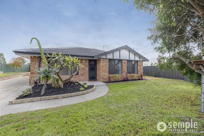 Picture of 2 Wills Court, COOLOONGUP WA 6168