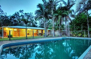 Picture of 24 Grey Gum Rd, Chambers Flat QLD 4133