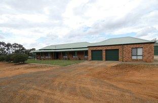 Picture of 1798 Murringo Road, Murringo NSW 2586