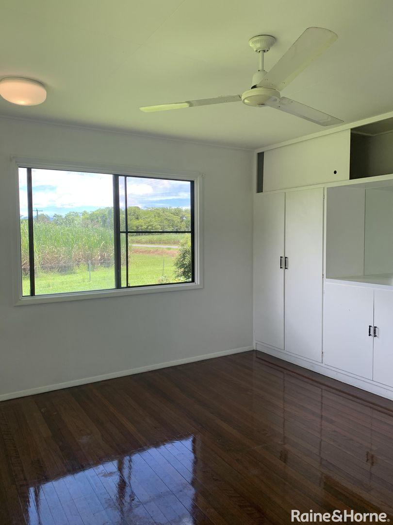2/579 Mossman-Daintree Road, Miallo QLD 4873, Image 1