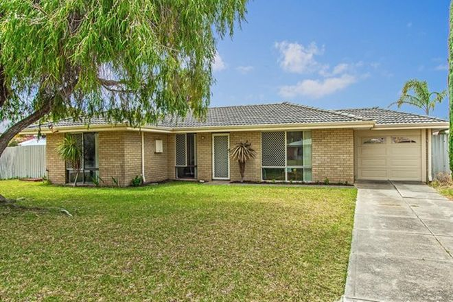 Picture of 14 Casilda Place, COOLOONGUP WA 6168