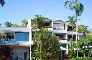Picture of Macrossan Street, Port Douglas QLD 4877