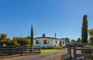 Picture of 144 Bourne Drive, Roma QLD 4455