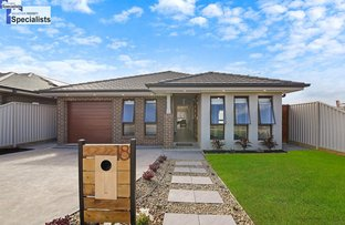 Picture of 18 Hemmie Rd, Edmondson Park NSW 2174