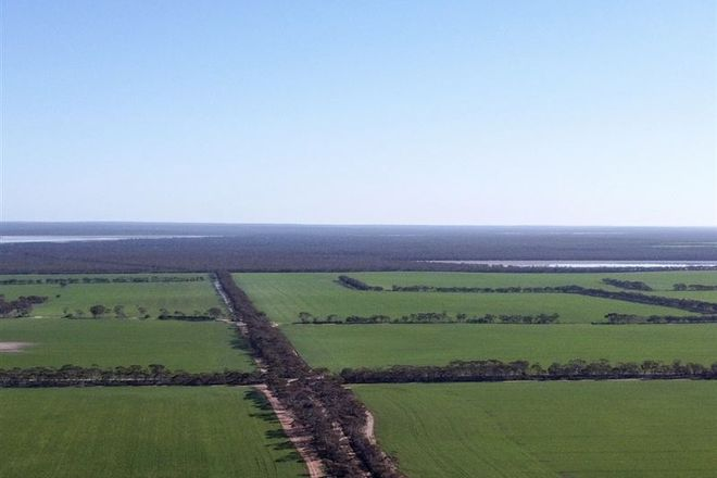 Picture of 1982 Salmon Gums West Rd, SALMON GUMS WA 6445