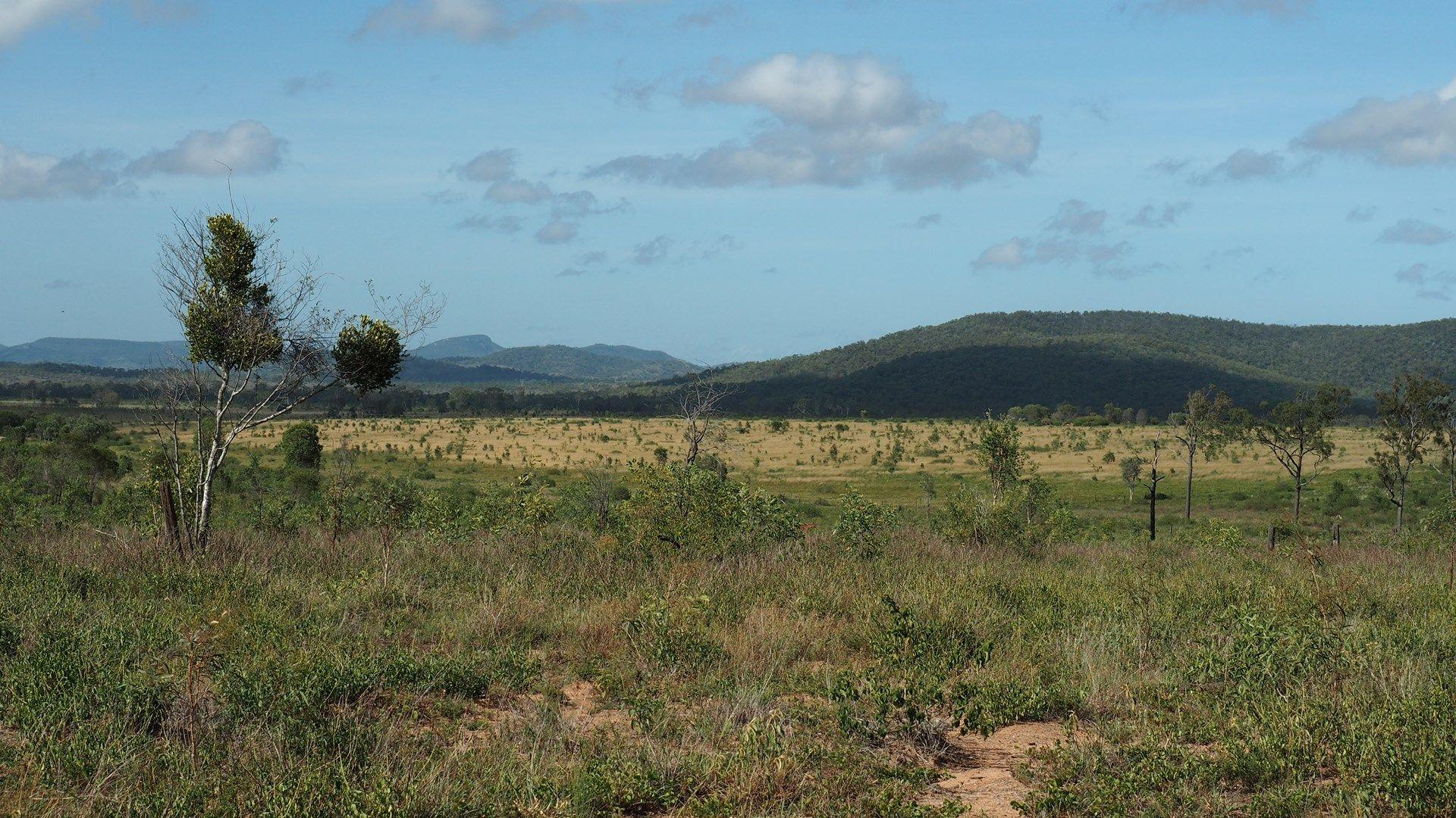 370 Wattlebank Rd, Canoona QLD 4702, Image 0