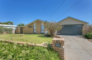 Picture of 17 Lyndhurst Road, Seaford SA 5169