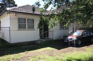 Picture of 48 The Avenue, Canley Vale NSW 2166