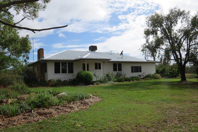Picture of 289 Dewrang Road, WARIALDA NSW 2402