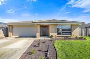 Picture of 71 Davey Drive, Trafalgar VIC 3824