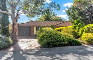 Picture of 13 Abberton Street, Flagstaff Hill SA 5159