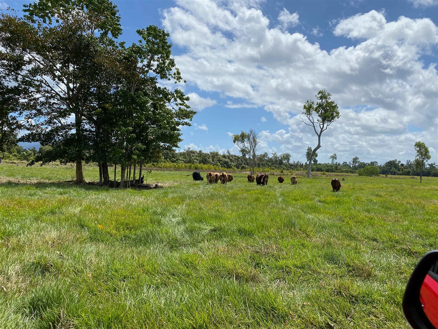Ellerbeck QLD 4816, Image 0