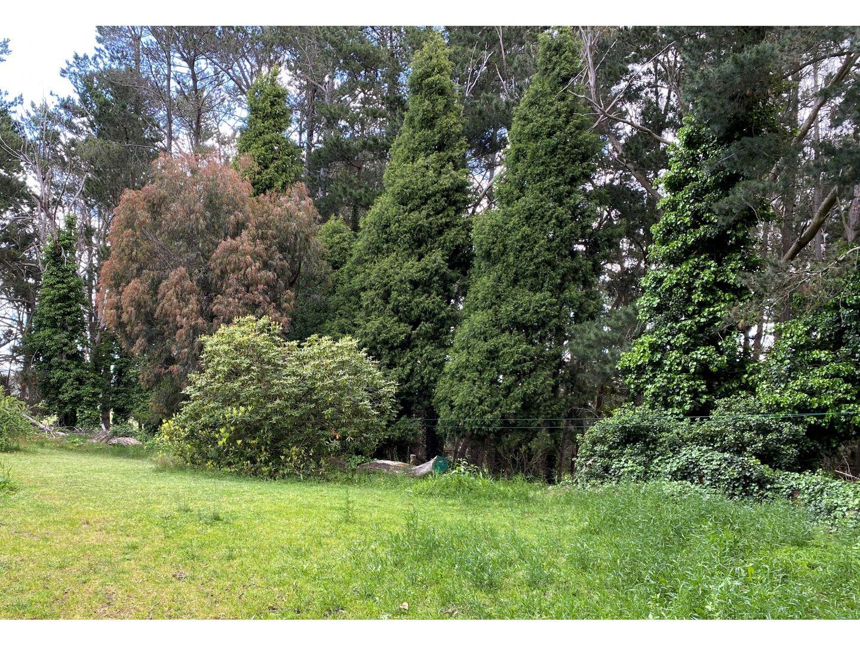 423 Lowes Mount Road, Oberon NSW 2787, Image 1
