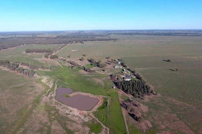 """Picture of """"Argyle Downs"""" 44 Woodford Road, TRUNDLE NSW 2875"""