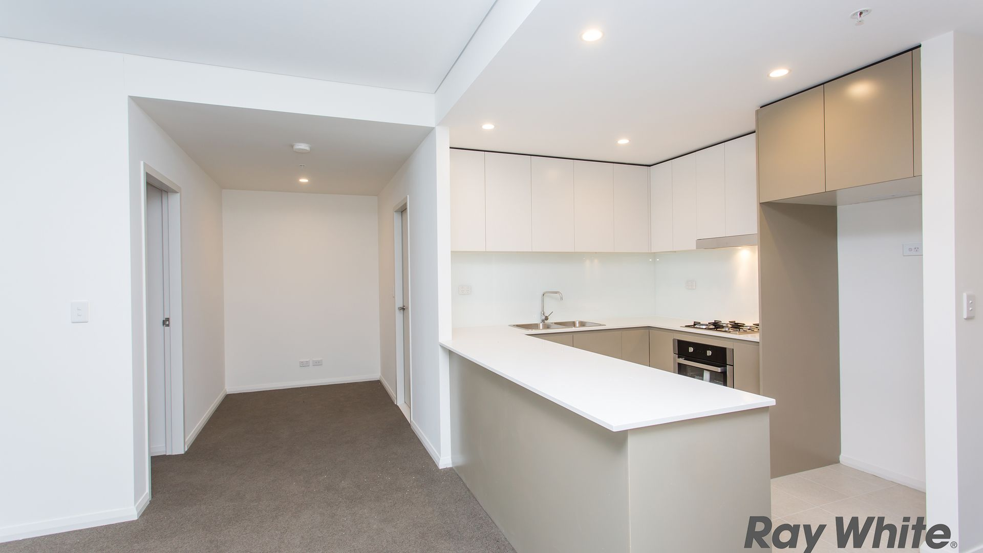 2a Charles Street, Canterbury NSW 2193, Image 1
