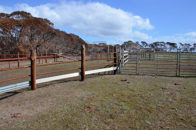 Picture of Lot 20 SPRINGS ROAD, MENZIES SA 5223
