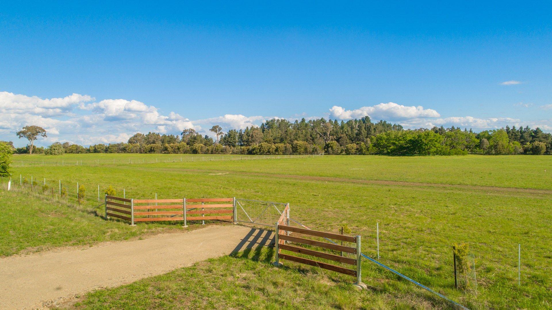 Lot 104 The Pines Estate, Armidale NSW 2350, Image 0