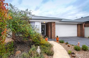 Picture of 9 Nirimba Court, Ascot VIC 3551