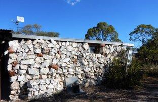 Picture of WLL 14541 4 Mile, Lightning Ridge NSW 2834