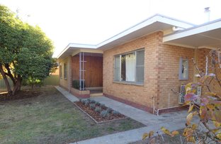 Picture of 48 Lewis Avenue, Myrtleford VIC 3737
