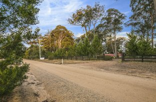 Picture of 75 Hawkshill Road, Canyonleigh NSW 2577