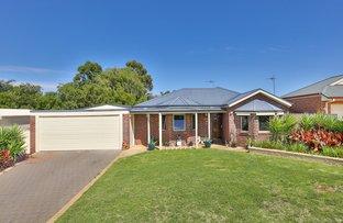 2 Fiona Drive, Gol Gol NSW 2738