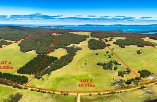 Picture of Lot 4,5,6 & 7 Mount Richard Road, Nanarup WA 6330