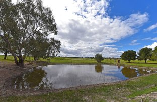 Picture of 5 Pretty John Road, Murchison VIC 3610
