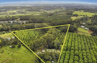 Picture of 272 Sneaths Road, Wollongbar NSW 2477