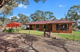 Picture of 134 McCombs Road, Lockwood VIC 3551