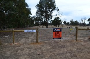 Picture of CA 48JB 250 Daisyburn Road, Glenaroua VIC 3764