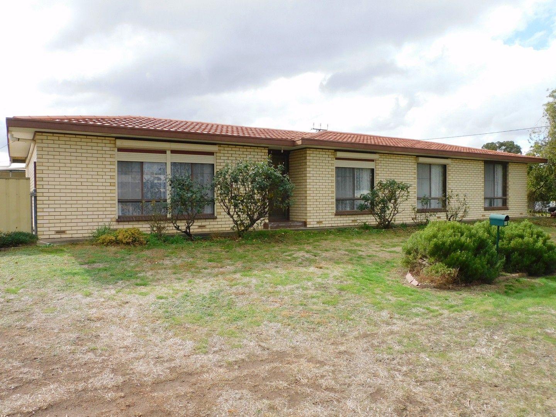 53 Milne Street, Bordertown SA 5268, Image 0