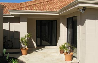 Picture of 4 Pipit Court, Broadwater WA 6280