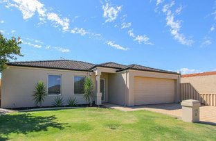 Picture of 8 Rigby Avenue, Spearwood WA 6163