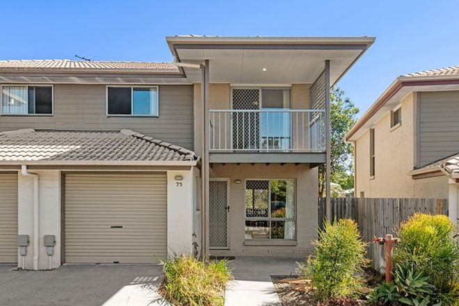 Picture of 75/130 Jutland Street, OXLEY QLD 4075