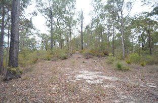 Picture of Lot 60 White Mountain Road, White Mountain QLD 4352