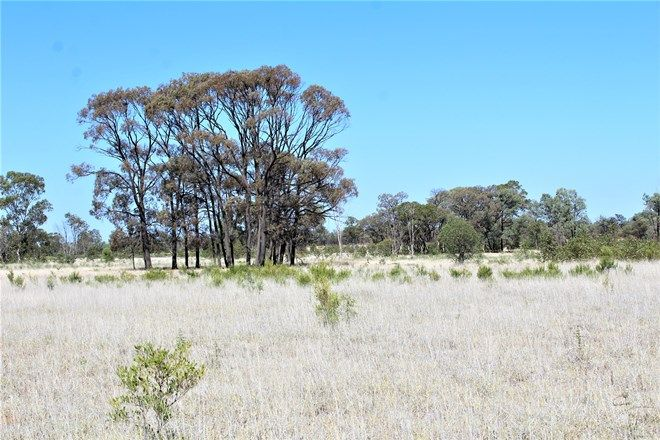 Picture of ROMA QLD 4455