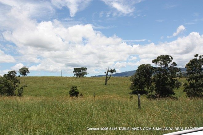 Picture of MILLAA MILLAA QLD 4886