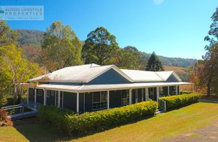 Picture of 704 Lamington National Park Road, Canungra QLD 4275