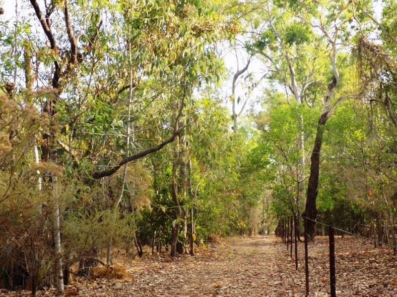 1340 Cox Peninsula Road, Berry Springs NT 0838, Image 0