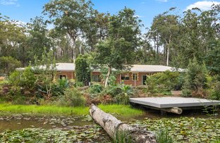 Picture of 67 Riversdale Road, Tapitallee NSW 2540