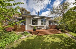 Picture of 102 Hawkesbury Crescent, Farrer ACT 2607