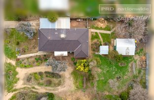 Picture of 16 Davidson Street, The Rock NSW 2655