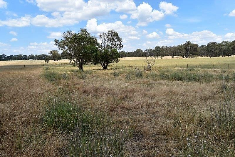 Lot 2 93 Williams Road, Barnawartha VIC 3688, Image 1