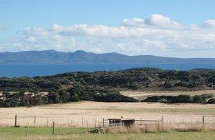 6 Port Davies Road, Flinders Island TAS 7255